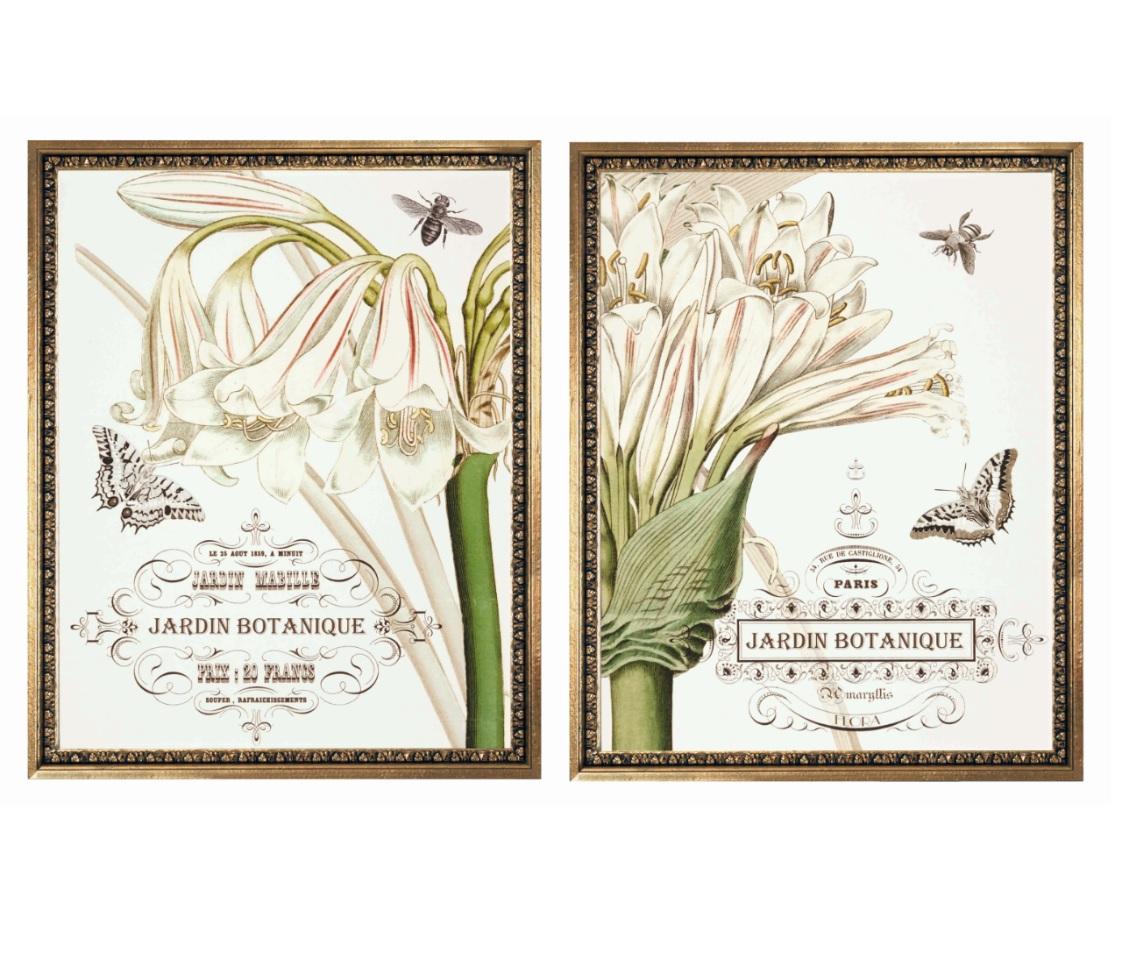 Картины в раме (2 шт)Картины<br>Две стильных картины от датского бренда g&amp;amp;amp;c. На одной изображение половины распустившегося бутона, а второй - половина другой части белого цветка, вокруг которого бабочки. Здорово будут смотреться рядом на одной стене комнаты.<br><br>Material: Бумага<br>Length см: None<br>Width см: 56<br>Depth см: 4<br>Height см: 71<br>Diameter см: 0