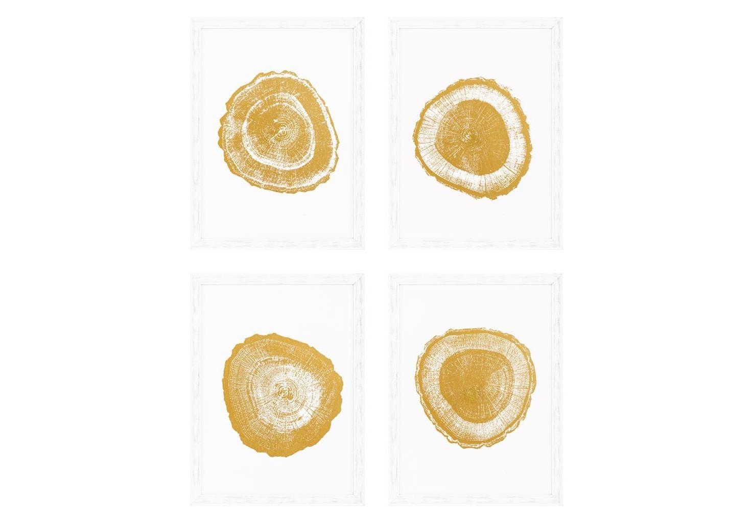 КартинаКартины<br>Коллаж из 4-х постеров под стеклом Prints Gold Foil: Tree Rings set of 4 с изображением разрезов дерева. Рама выполнена из дерева белого цвета.<br><br>Material: Дерево<br>Ширина см: 61<br>Высота см: 81