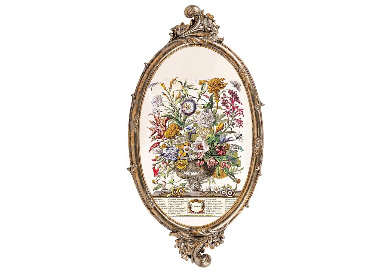 Репродукция «12 месяцев цветения» (Сентябрь)Картины<br>Фламандский  цветочный натюрморт «12 месяцев цветения» (Сентябрь) особенно уютен в картинной раме, подражающей  манерам французского дворцового классицизма. Витиеватый орнамент рамы органично дорисовывает пышное соцветие старинной гравюры XVIII века.    Изображение напечатано на холсте, покрыто защитным матовым лаком. Классический бронзовый цвет рамы из полистоуна  - залог соседства с большинством предметов мебели и декора. Удобное крепление рамы позволит без труда разместить её на стене.&amp;lt;div&amp;gt;&amp;lt;br&amp;gt;&amp;lt;/div&amp;gt;&amp;lt;div&amp;gt;Материал: рама - полистоун; изображение – холст, матовый лак&amp;lt;br&amp;gt;&amp;amp;nbsp; &amp;lt;div&amp;gt;&amp;lt;br&amp;gt;&amp;lt;/div&amp;gt;&amp;lt;div&amp;gt;&amp;lt;br&amp;gt;&amp;lt;/div&amp;gt;&amp;lt;/div&amp;gt;<br><br>Material: Полистоун<br>Width см: 28.5<br>Depth см: 1.5<br>Height см: 54.5