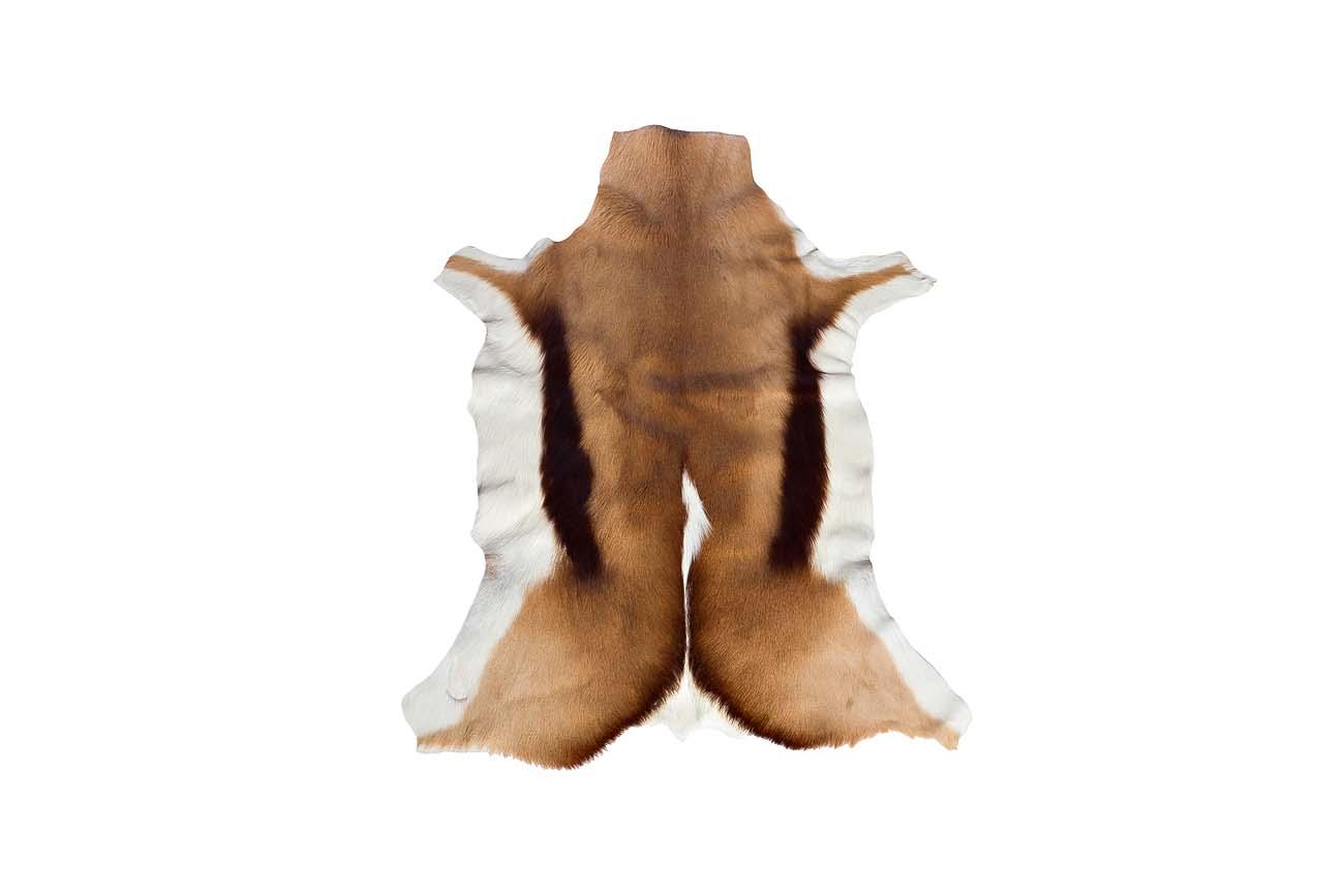 Шкура под антилопуФигурные ковры<br><br><br>Material: Мех<br>Ширина см: 100.0<br>Глубина см: 60.0