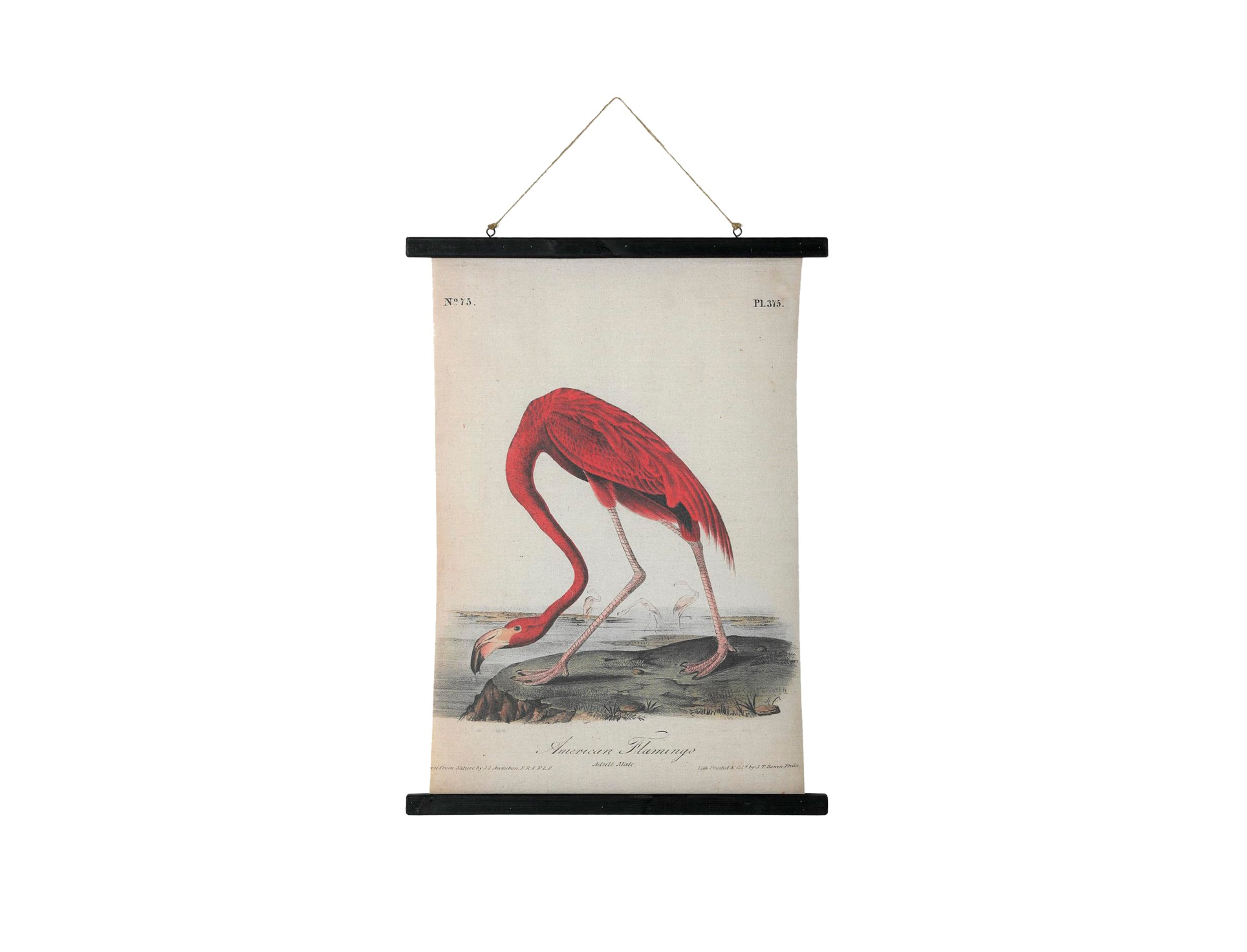 Картина FlamingoКартины<br>Материал: ель, лен.<br><br>kit: None<br>gender: None