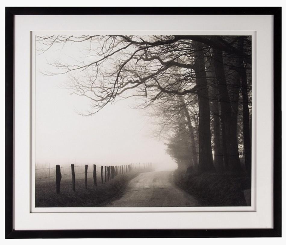 Постер Nicholas Bell Hyatt LaneПостеры<br>Фотография дороги, уходящей вдаль, всегда напоминает нам о необходимости помнить о важности Пути, задает перспективу -- интерьеру и жизни.<br><br>Material: Бумага<br>Width см: 95<br>Depth см: 4<br>Height см: 80