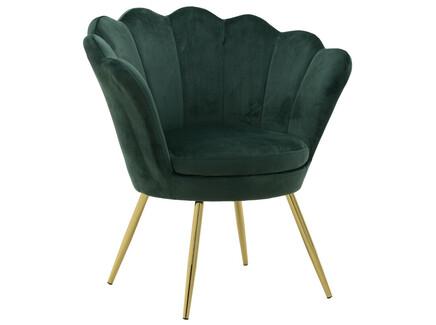 Кресло bludenz (to4rooms) зеленый 76x80x60 см.
