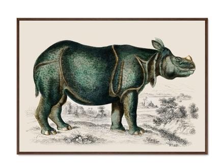 Картина rhinoceros 1774г. (картины в квартиру) мультиколор 105x75 см.