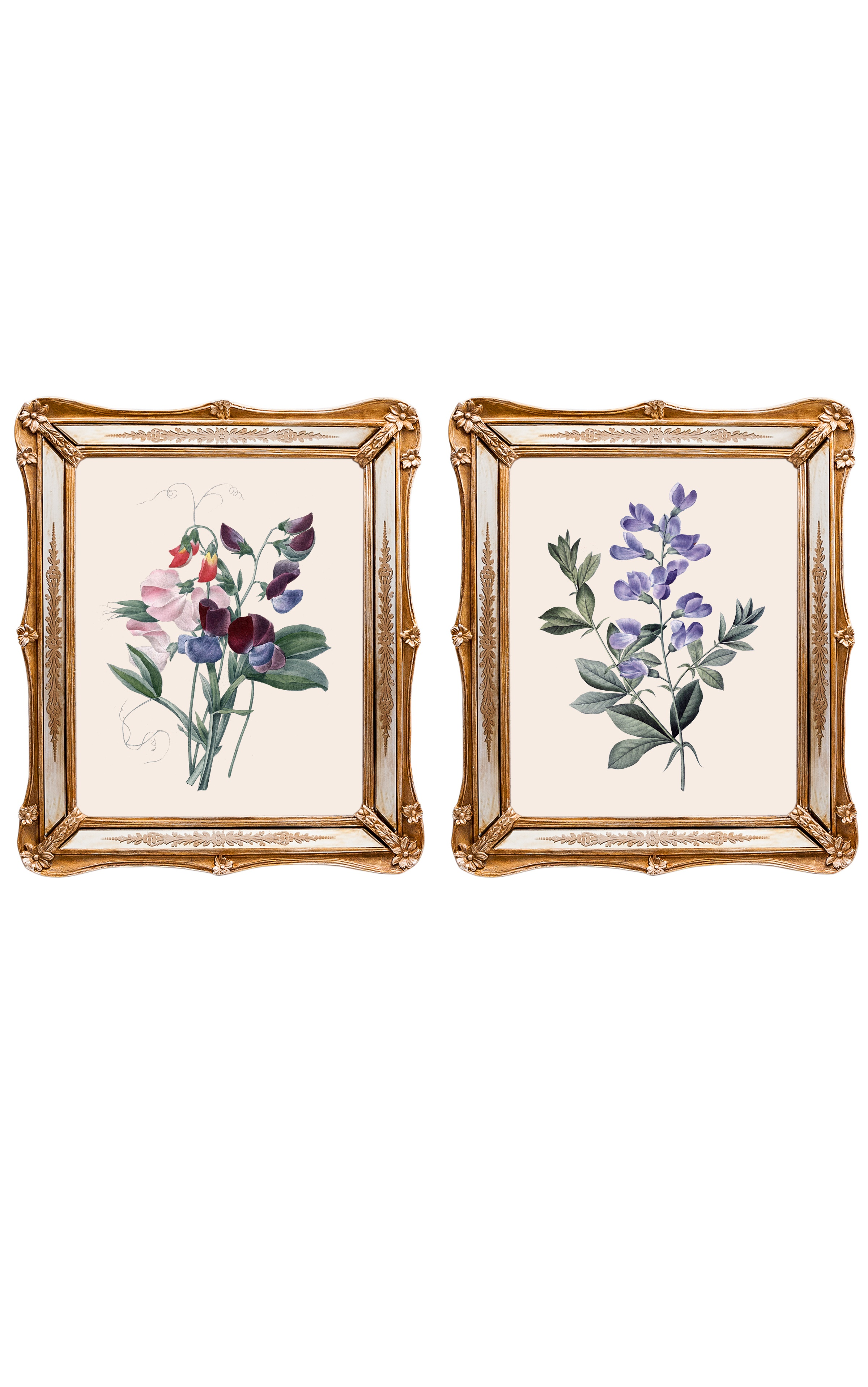 Набор из двух репродукций старинных картин в раме Софи. Удивительные цветы 4Картины<br>&amp;lt;div&amp;gt;Репродукции акварелей французского художника Пьера-Жозефа Редуте, которого называли «Рафаэлем цветов», остаются так же свежи в начале 21 века, будто написаны совсем недавно. Они добавляют в интерьер нотки винтажной красоты, а удивительные цветы впечатляют своими изысканными формами. Репродукции акварелей в рамах с зеркальными вставками и золотым рельефом фантастически преображается в освещенном солнцем интерьере. Картины можно повесить на стену, а можно поставить, например, на стол или камин. Защитный стеклянный слой сохранит изображение от воздействий окружающей среды. Если Вам захочется обновить интерьер, Вы можете с легкостью заменить изображение картины!&amp;lt;/div&amp;gt;&amp;lt;div&amp;gt;&amp;lt;br&amp;gt;&amp;lt;/div&amp;gt;&amp;lt;div&amp;gt;Изображение - дизайнерская бумага; рама - искуственный камень, зеркальные вставки; защитный слой - стекло&amp;amp;nbsp;&amp;lt;/div&amp;gt;&amp;lt;div&amp;gt;цвет:мультиколор&amp;amp;nbsp;&amp;lt;/div&amp;gt;<br><br>Material: Бумага<br>Width см: 26,5<br>Depth см: 2<br>Height см: 30,5