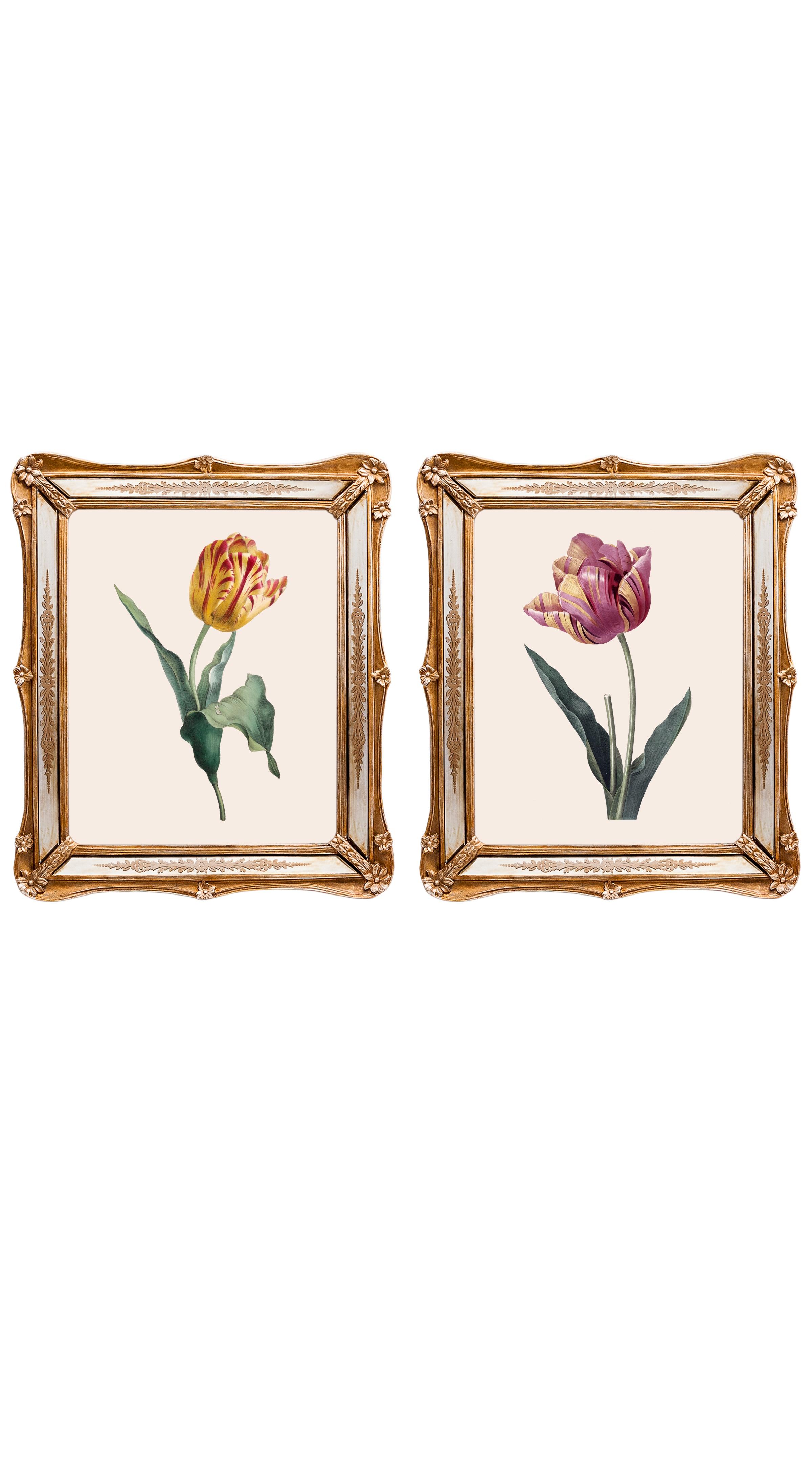 Набор из двух репродукций СофиКартины<br>&amp;lt;div&amp;gt;Французский художник Пьер-Жозеф Редуте был «рисовальщиком при трех королевах». Ему покровительствовали Мария-Антуанетта, Жозефина де Богарне и Мария-Луиза Австрийская. Репродукции его акварелей дополнят романтический образ Вашего интерьера. Обрамленные в великолепные и необычные рамы с зеркальными вставками, они станут подлинной драгоценностью Вашей комнаты! Картины можно повесить на стену, а можно поставить, например, на стол или камин. Защитный стеклянный слой сохранит изображение от воздействий окружающей среды. Если Вам захочется обновить интерьер, Вы можете с легкостью заменить изображение картины!&amp;lt;/div&amp;gt;&amp;lt;div&amp;gt;&amp;lt;br&amp;gt;&amp;lt;/div&amp;gt;&amp;lt;div&amp;gt;Изображение - дизайнерская бумага; рама - искуственный камень, зеркальные вставки; защитный слой - стекло&amp;amp;nbsp;&amp;lt;/div&amp;gt;&amp;lt;div&amp;gt;цвет:мультиколор&amp;amp;nbsp;&amp;lt;/div&amp;gt;<br><br>Material: Бумага<br>Ширина см: 26<br>Высота см: 30<br>Глубина см: 2