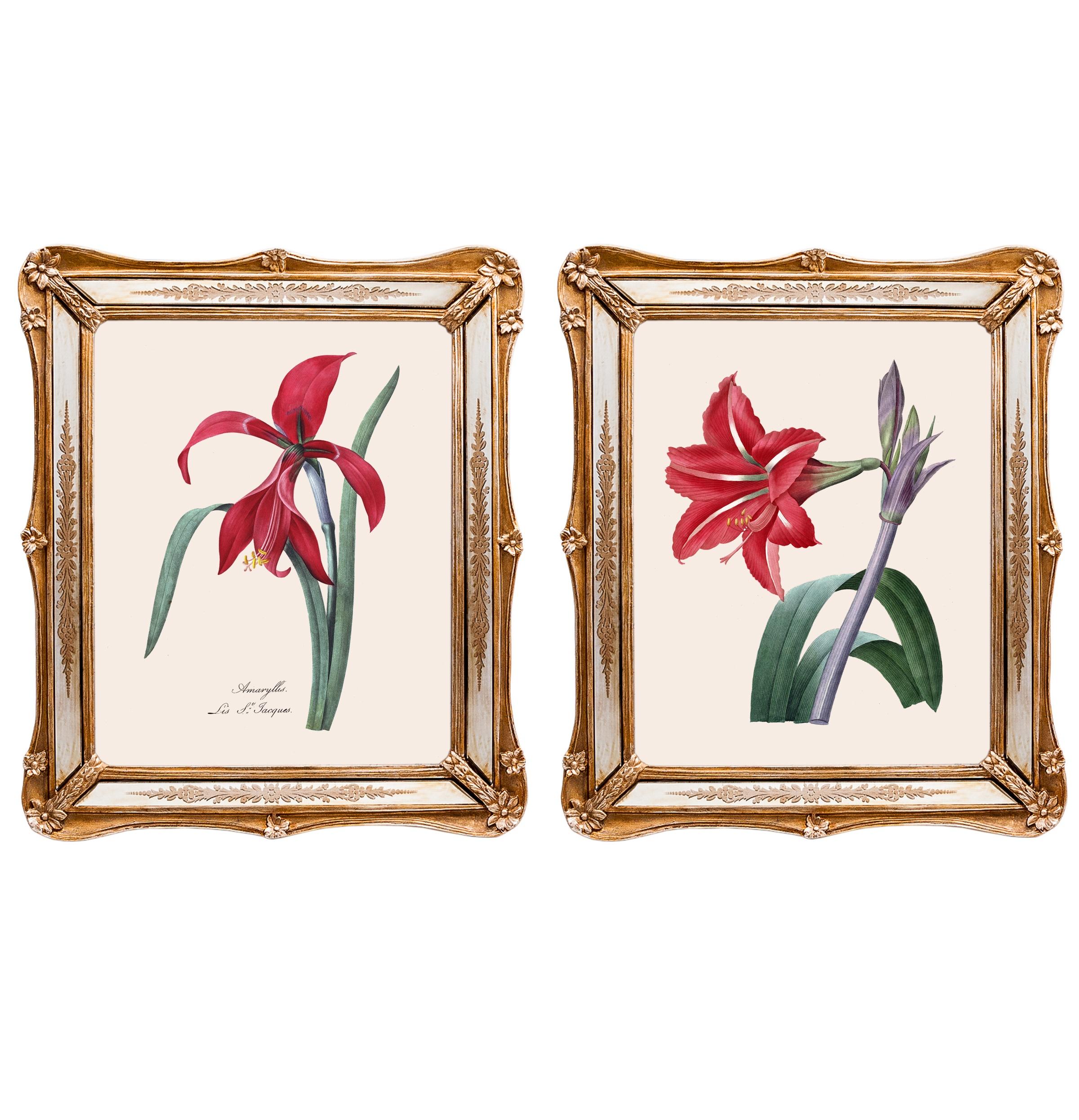 Набор из двух репродукций старинных картин в раме Софи. Удивительные цветы 8Картины<br>&amp;lt;div&amp;gt;Барышни позапрошлого века тщательно срисовывали в свои альбомы акварели французского ботаника Пьера-Жозефа Редуте, который был официальным придворным художником королевы Марии-Антуанетты. Репродукции его великолепных работ, обрамленные в не менее красивые рамы с зеркальными вставками, созданы удивлять и ежедневно дарить прекрасное настроение. Картины можно повесить на стену, а можно поставить, например, на стол или камин. Защитный стеклянный слой сохранит изображение от воздействий окружающей среды. Если Вам захочется обновить интерьер, Вы можете с легкостью заменить изображение картины!&amp;lt;/div&amp;gt;&amp;lt;div&amp;gt;&amp;lt;br&amp;gt;&amp;lt;/div&amp;gt;&amp;lt;div&amp;gt;Изображение - дизайнерская бумага; рама - искуственный камень, зеркальные вставки; защитный слой - стекло&amp;amp;nbsp;&amp;lt;/div&amp;gt;&amp;lt;div&amp;gt;цвет:мультиколор&amp;amp;nbsp;&amp;lt;/div&amp;gt;<br><br>Material: Бумага<br>Width см: 26,5<br>Depth см: 2<br>Height см: 30,5