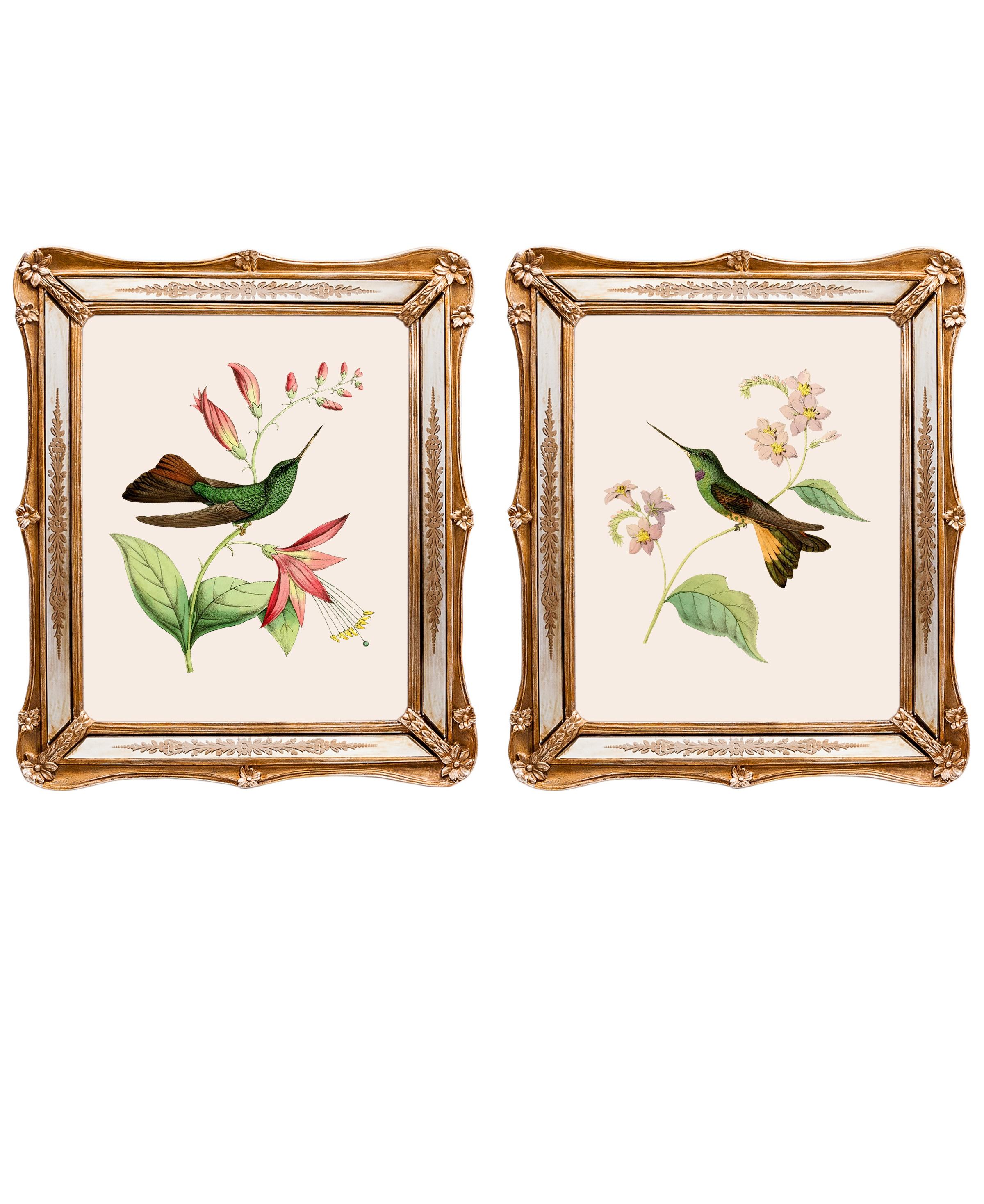 Набор из двух репродукций старинных картин в раме Софи. Дивные птицы 3Картины<br>&amp;lt;div&amp;gt;Изображения райских птиц на акварелях художников 19 века завораживают. Репродукции этих изображений, обрамленные в великолепные и необычные рамы с зеркальными вставками, станут подлинной драгоценностью Вашей комнаты! Картины можно повесить на стену, а можно поставить, например, на стол или камин. Защитный стеклянный слой сохранит изображение от воздействий окружающей среды. Если Вам захочется обновить интерьер, Вы можете с легкостью заменить изображение картины!&amp;lt;/div&amp;gt;&amp;lt;div&amp;gt;&amp;lt;br&amp;gt;&amp;lt;/div&amp;gt;&amp;lt;div&amp;gt;Изображение - дизайнерская бумага; рама - искуственный камень, зеркальные вставки; защитный слой - стекло&amp;amp;nbsp;&amp;lt;/div&amp;gt;&amp;lt;div&amp;gt;цвет:мультиколор&amp;amp;nbsp;&amp;lt;/div&amp;gt;<br><br>Material: Бумага<br>Width см: 26,5<br>Depth см: 2<br>Height см: 30,5