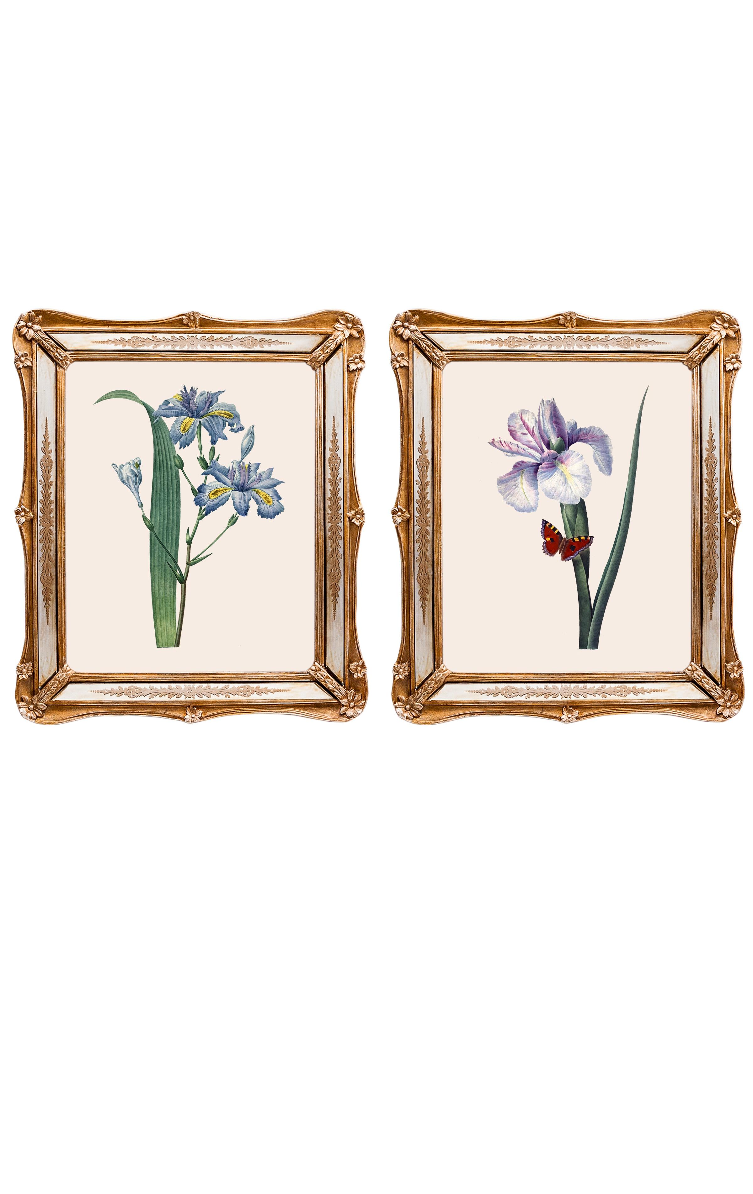 Набор из двух репродукций СофиКартины<br>&amp;lt;div&amp;gt;Репродукции акварелей французского художника Пьера-Жозефа Редуте, которого называли «Рафаэлем цветов», остаются так же свежи в начале 21 века, будто написаны совсем недавно. Они добавляют в интерьер нотки винтажной красоты, а удивительные цветы впечатляют своими изысканными формами. Репродукции акварелей в рамах с зеркальными вставками и золотым рельефом фантастически преображается в освещенном солнцем интерьере. Картины можно повесить на стену, а можно поставить, например, на стол или камин. Защитный стеклянный слой сохранит изображение от воздействий окружающей среды. Если Вам захочется обновить интерьер, Вы можете с легкостью заменить изображение картины!&amp;lt;/div&amp;gt;&amp;lt;div&amp;gt;&amp;lt;br&amp;gt;&amp;lt;/div&amp;gt;&amp;lt;div&amp;gt;Изображение - дизайнерская бумага; рама - искуственный камень, зеркальные вставки; защитный слой - стекло&amp;amp;nbsp;&amp;lt;/div&amp;gt;&amp;lt;div&amp;gt;цвет:мультиколор&amp;amp;nbsp;&amp;lt;/div&amp;gt;<br><br>Material: Бумага<br>Width см: 26,5<br>Depth см: 2<br>Height см: 30,5