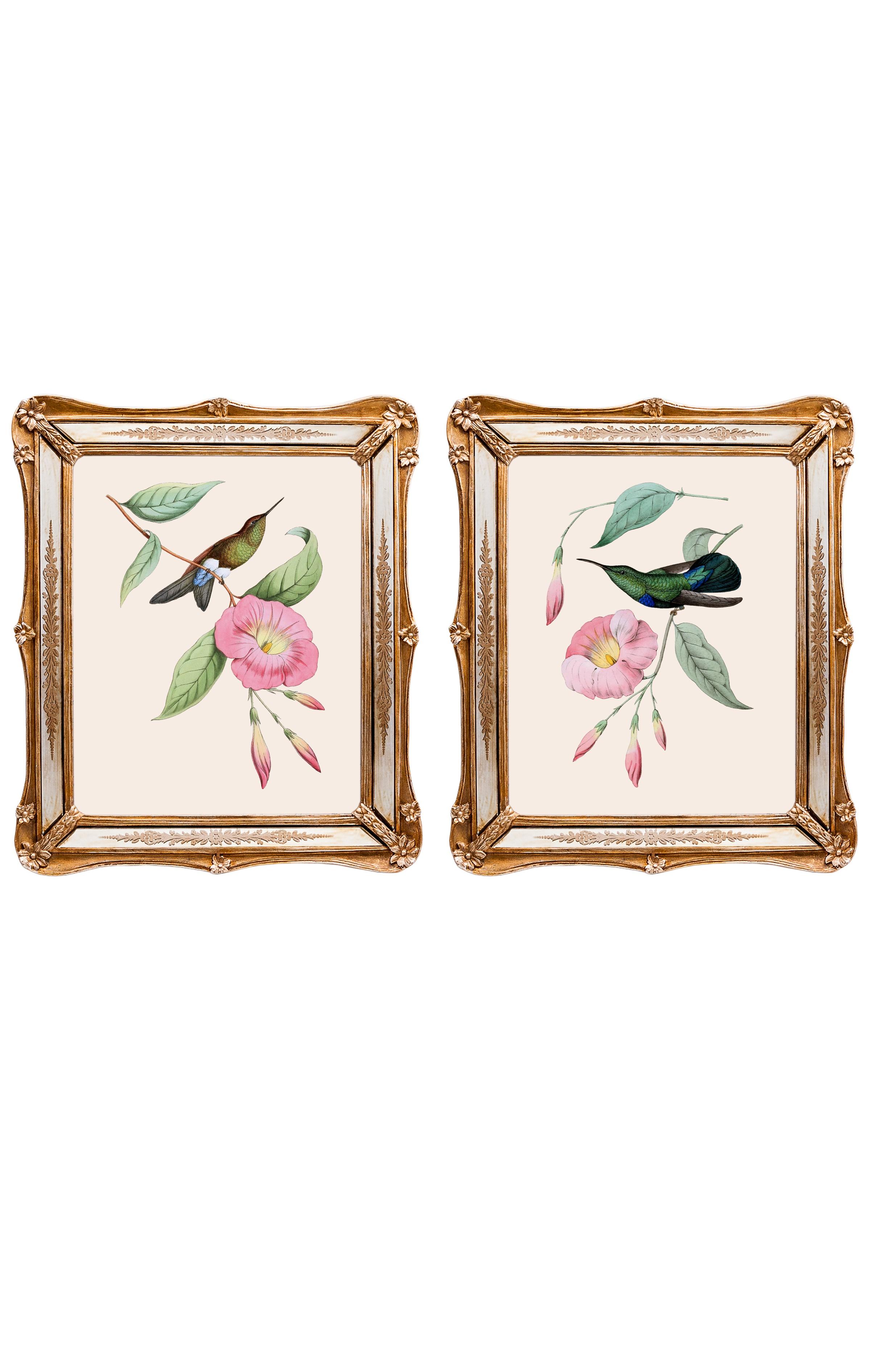 Набор из двух репродукций старинных картин в раме Софи. Дивные птицы 2Картины<br>&amp;lt;div&amp;gt;Репродукции акварелистов 19 века удовлетворят даже самый взыскательный вкус. Как очаровательны эти экзотические птицы! Красота оперения наталкивает на мысль, что это райские создания. Репродукции акварелей, обрамленные в великолепные рамы с зеркальными вставками, созданы удивлять и ежедневно дарить прекрасное настроение. Картины можно повесить на стену, а можно поставить, например, на стол или камин. Защитный стеклянный слой сохранит изображение от воздействий окружающей среды. Если Вам захочется обновить интерьер, Вы можете с легкостью заменить изображение картины!&amp;lt;/div&amp;gt;&amp;lt;div&amp;gt;&amp;lt;br&amp;gt;&amp;lt;/div&amp;gt;&amp;lt;div&amp;gt;Изображение - дизайнерская бумага; рама - искуственный камень, зеркальные вставки; защитный слой - стекло&amp;amp;nbsp;&amp;lt;/div&amp;gt;&amp;lt;div&amp;gt;цвет:мультиколор&amp;lt;/div&amp;gt;<br><br>Material: Бумага<br>Width см: 26,5<br>Depth см: 2<br>Height см: 30,5