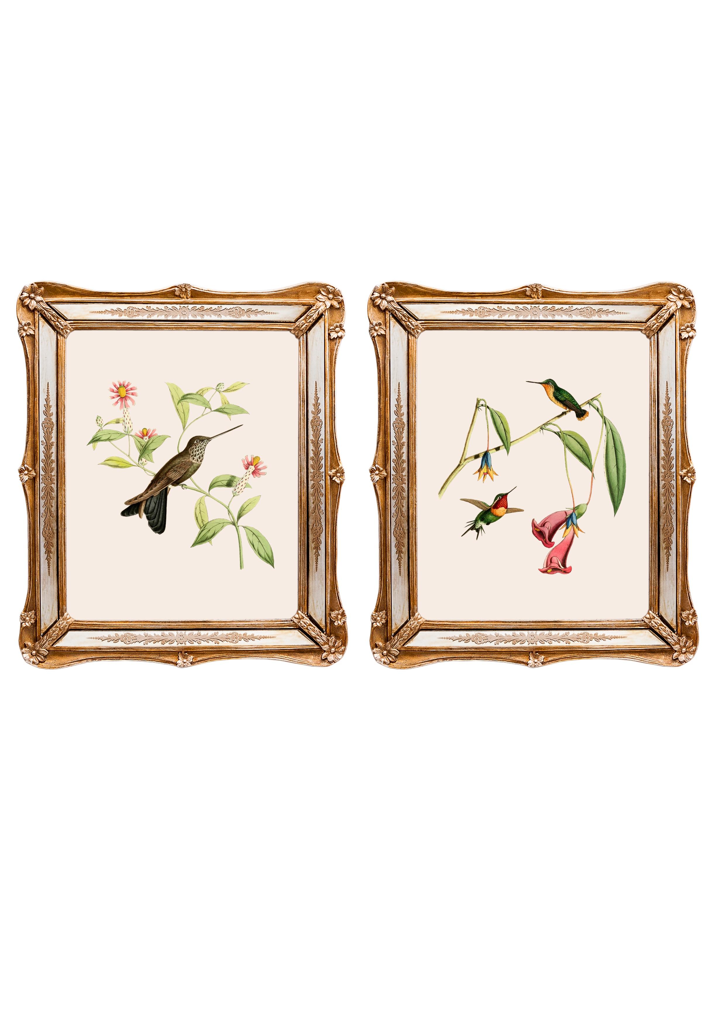 Набор из двух репродукций старинных картин в раме Софи. Дивные птицы 6Картины<br>&amp;lt;div&amp;gt;Изображения райских птиц на акварелях художников 19 века завораживают. Репродукции этих изображений, обрамленные в великолепные и необычные рамы с зеркальными вставками, станут подлинной драгоценностью Вашей комнаты! Картины можно повесить на стену, а можно поставить, например, на стол или камин. Защитный стеклянный слой сохранит изображение от воздействий окружающей среды. Если Вам захочется обновить интерьер, Вы можете с легкостью заменить изображение картины!&amp;lt;/div&amp;gt;&amp;lt;div&amp;gt;&amp;lt;br&amp;gt;&amp;lt;/div&amp;gt;&amp;lt;div&amp;gt;Изображение - дизайнерская бумага; рама - искуственный камень, зеркальные вставки; защитный слой - стекло&amp;amp;nbsp;&amp;lt;/div&amp;gt;&amp;lt;div&amp;gt;цвет:мультиколор&amp;amp;nbsp;&amp;lt;/div&amp;gt;<br><br>Material: Бумага<br>Width см: 26,5<br>Depth см: 2<br>Height см: 30,5