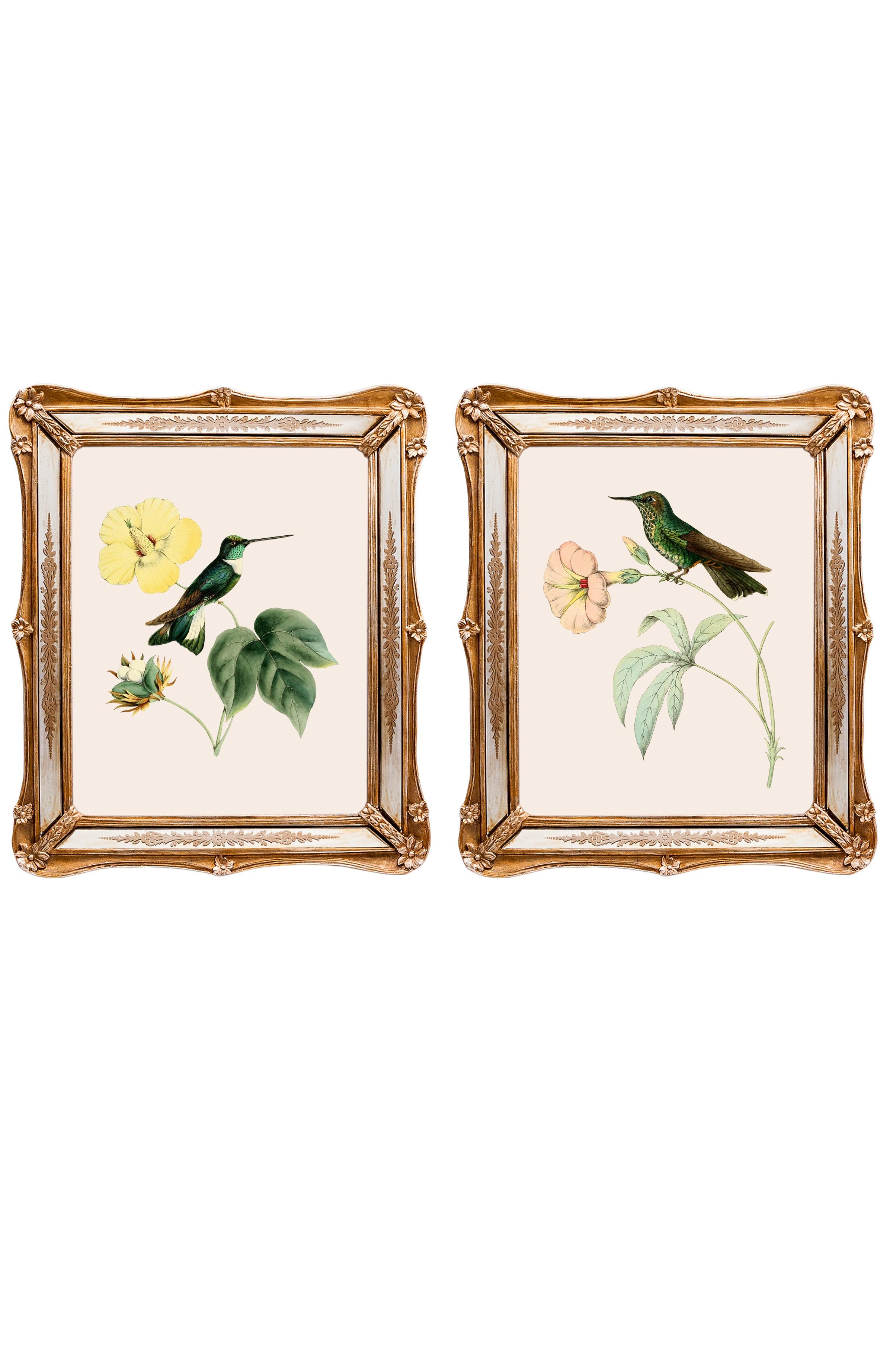 Набор из двух репродукций Софи.Картины<br>&amp;lt;div&amp;gt;Репродукции акварелистов 19 века удовлетворят даже самый взыскательный вкус. Как очаровательны эти экзотические птицы! Красота оперения наталкивает на мысль, что это райские создания. Репродукции акварелей, обрамленные в великолепные рамы с зеркальными вставками, созданы удивлять и ежедневно дарить прекрасное настроение. Картины можно повесить на стену, а можно поставить, например, на стол или камин. Защитный стеклянный слой сохранит изображение от воздействий окружающей среды. Если Вам захочется обновить интерьер, Вы можете с легкостью заменить изображение картины!&amp;lt;/div&amp;gt;&amp;lt;div&amp;gt;&amp;lt;br&amp;gt;&amp;lt;/div&amp;gt;&amp;lt;div&amp;gt;Изображение - дизайнерская бумага; рама - искуственный камень, зеркальные вставки; защитный слой - стекло&amp;amp;nbsp;&amp;lt;/div&amp;gt;&amp;lt;div&amp;gt;цвет:мультиколор&amp;amp;nbsp;&amp;lt;/div&amp;gt;<br><br>Material: Бумага<br>Width см: 26,5<br>Depth см: 2<br>Height см: 30,5