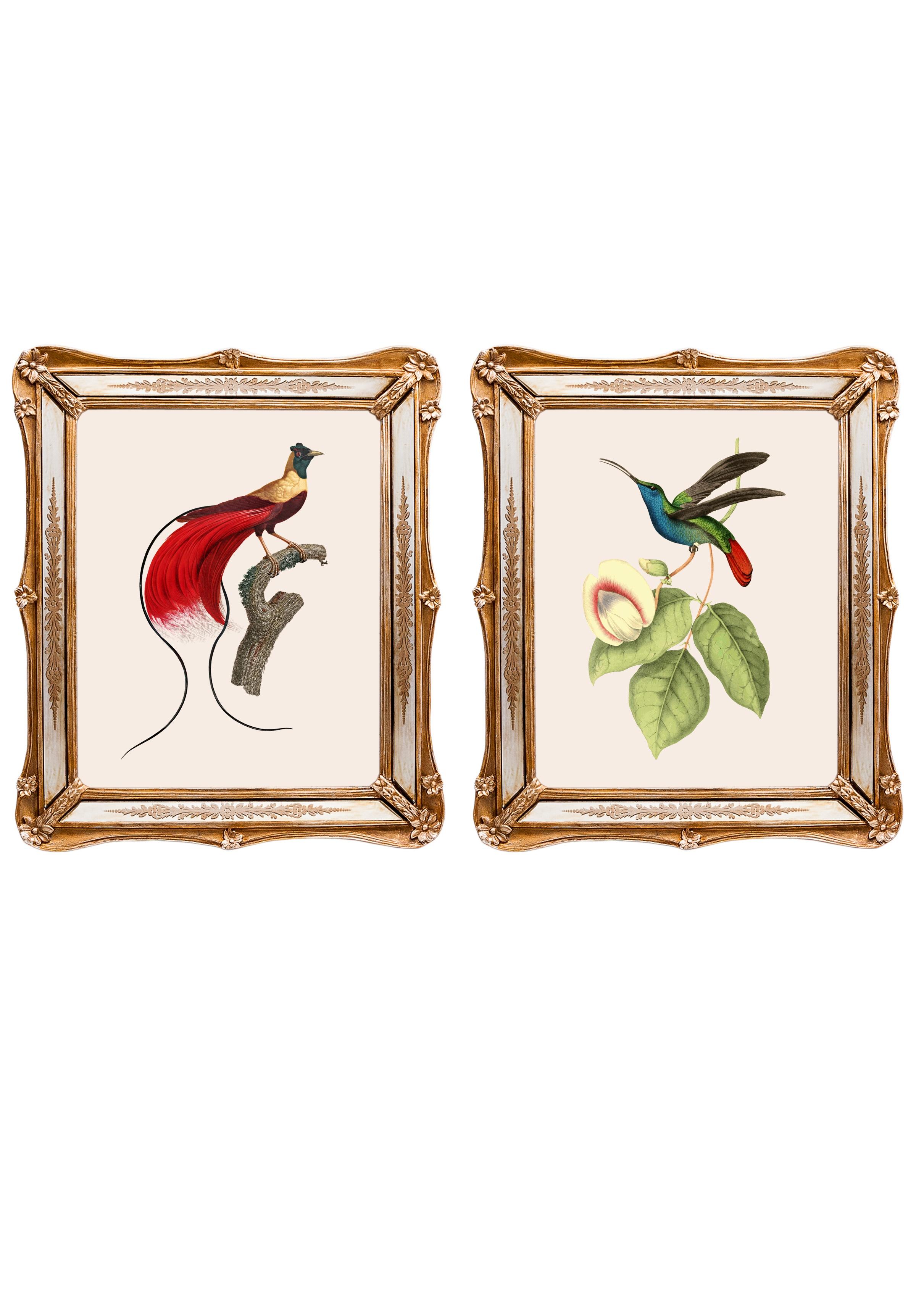 Набор из двух репродукций старинных картин в раме Софи. Дивные птицы 9Картины<br>&amp;lt;div&amp;gt;Изображения райских птиц на акварелях художников 19 века завораживают. Репродукции этих изображений, обрамленные в великолепные и необычные рамы с зеркальными вставками, станут подлинной драгоценностью Вашей комнаты! Картины можно повесить на стену, а можно поставить, например, на стол или камин. Защитный стеклянный слой сохранит изображение от воздействий окружающей среды. Если Вам захочется обновить интерьер, Вы можете с легкостью заменить изображение картины!&amp;lt;/div&amp;gt;&amp;lt;div&amp;gt;Изображение - дизайнерская бумага; рама - искуственный камень, зеркальные вставки; защитный слой - стекло&amp;amp;nbsp;&amp;lt;/div&amp;gt;&amp;lt;div&amp;gt;цвет:мультиколор&amp;amp;nbsp;&amp;lt;/div&amp;gt;<br><br>Material: Бумага<br>Width см: 26,5<br>Depth см: 2<br>Height см: 30,5