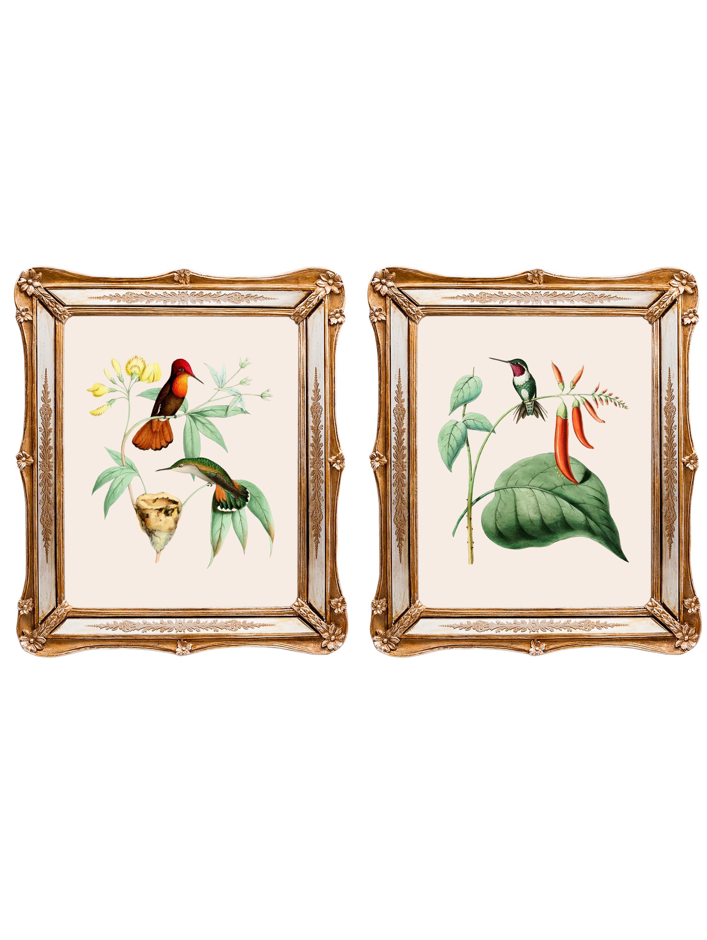 Набор из двух репродукций Софи.Картины<br>&amp;lt;div&amp;gt;Репродукции акварелей 19 века с изображениями райских птиц наполнят атмосферу дома волнительными нотками прошлых столетий. На этих работах присутствует ореол романтики, теплоты, нежности. Репродукции акварелей в рамах с зеркальными вставками и золотым рельефом фантастически преображается в освещенном солнцем интерьере. Картины можно повесить на стену, а можно поставить, например, на стол или камин. Защитный стеклянный слой сохранит изображение от воздействий окружающей среды. Если Вам захочется обновить интерьер, Вы можете с легкостью заменить изображение картины!&amp;lt;/div&amp;gt;&amp;lt;div&amp;gt;&amp;lt;br&amp;gt;&amp;lt;/div&amp;gt;&amp;lt;div&amp;gt;Изображение - дизайнерская бумага; рама - искуственный камень, зеркальные вставки; защитный слой - стекло&amp;amp;nbsp;&amp;lt;/div&amp;gt;&amp;lt;div&amp;gt;Цвет: мультиколор&amp;lt;/div&amp;gt;<br><br>Material: Бумага<br>Ширина см: 26<br>Высота см: 30<br>Глубина см: 2