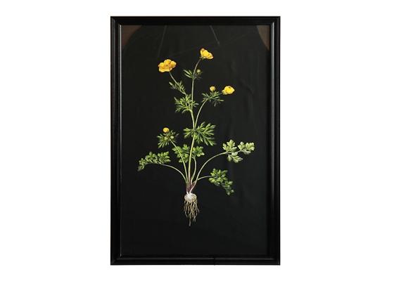 Постер Жёлтый цветокПостеры<br><br><br>Material: Дерево<br>Width см: 79<br>Depth см: 3<br>Height см: 135