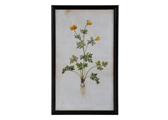 Постер Желтый цветокПостеры<br><br><br>Material: Дерево<br>Width см: 79<br>Depth см: 3<br>Height см: 135