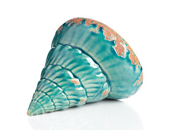 Предмет декора Marine Shells TealДругое<br>Элемент декора Marine Shells Teal I непременно привлечет взгляды ценителей изысканных и очаровательных вещей. Эта оригинальная ракушка цвета морской волны, изготовленная из керамики и имеющая искусственные потертости, украсит собой полку камина в гостиной или кухню, спальню или кабинет в стиле Прованс и другом любом. Другими словами, аксессуар удачно впишется в интерьер, даря ему очарование моря, лоск и роскошь.<br><br>Material: Керамика<br>Width см: 17<br>Depth см: 14<br>Height см: 18<br>Diameter см: None