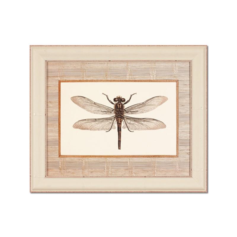 Картина СтрекозаКартины<br>Декоративная картина с изображением  стрекозы от датского бренда g&amp;amp;amp;c interiors. Стильно будет смотреться в гостиной или кабинете классического интерьера.<br><br>Material: Дерево<br>Width см: 35<br>Depth см: 3<br>Height см: 28<br>Diameter см: None