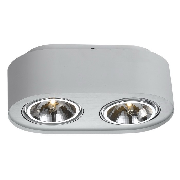 Потолочный светильникТочечный свет<br>&amp;lt;div&amp;gt;Цоколь:G53&amp;lt;/div&amp;gt;&amp;lt;div&amp;gt;Мощность лампы:50W&amp;lt;/div&amp;gt;&amp;lt;div&amp;gt;Количество ламп:2&amp;lt;/div&amp;gt;<br><br>Material: Металл<br>Width см: 27<br>Depth см: 12<br>Height см: 12