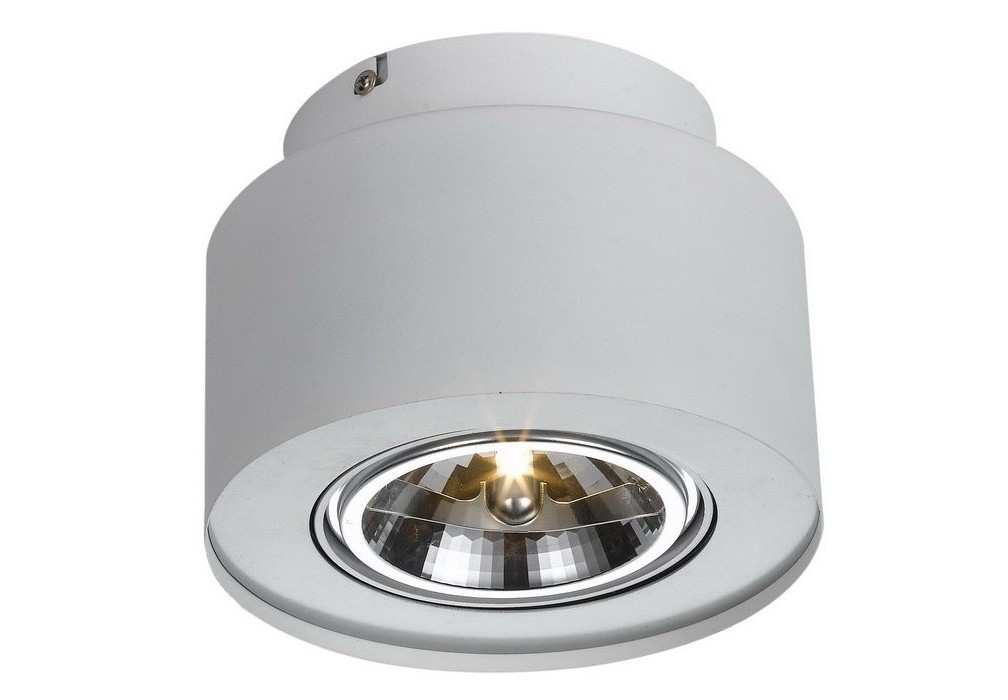 Потолочный светильникТочечный свет<br>&amp;lt;div&amp;gt;Цоколь:G53&amp;lt;/div&amp;gt;&amp;lt;div&amp;gt;ность лампы:50W&amp;lt;/div&amp;gt;&amp;lt;div&amp;gt;Количество ламп:1&amp;lt;/div&amp;gt;&amp;lt;div&amp;gt;&amp;lt;br&amp;gt;&amp;lt;/div&amp;gt;&amp;lt;div&amp;gt;Степень защиты: IP20&amp;lt;/div&amp;gt;<br><br>Material: Металл<br>Width см: None<br>Height см: 14<br>Diameter см: 19