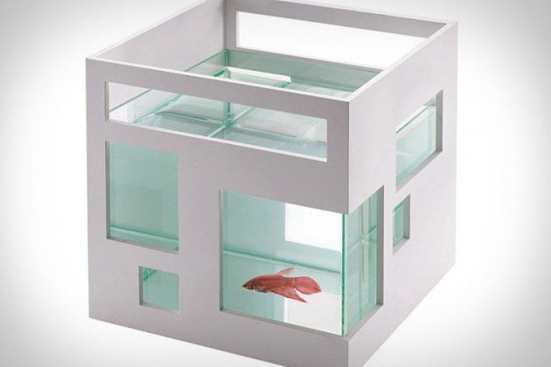 Аквариум  Отель для рыбки белыйДругое<br>Материал: Пластик ABS, стекло<br><br>Material: Пластик<br>Width см: 19<br>Depth см: 19<br>Height см: 20